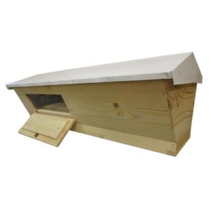 TBH 300x300 - Assembled Top Bar Hive with Observation Window